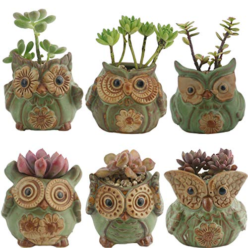 Succulent Planter Pots Owl Ceramic – Small Planter Pots with Drain Hole Bamboo Saucers Small Cactus Flower Plant Bonsai Container Gift for Office Coworkers Friends Home Decoration Pack of 6