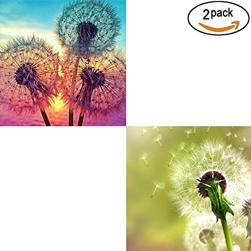 2 Pack 5D DIY Dandelion Diamond Painting Set Full Drill Diamond Painting Kits By Numbers DIY Tools,Dandelion(30x30CM/12″x12″)