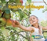 Nuestros Estómagos, Charlotte Guillain, 1432942964