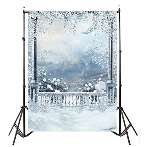 - Photo Background Backdrop Prop Window Snow Landscape Photography Studio Backdrop Background 3x5FT
