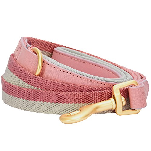 Pink Leather Leash - Blueberry Pet 6 Colors Polyester Fabric Webbing and Soft Genuine Leather Dog Leash with Soft & Comfortable Handle, 6 ft x 3/4