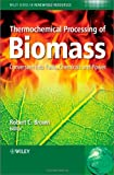 Thermochemical Processing of Biomass (Wiley Series in Renewable Resource)