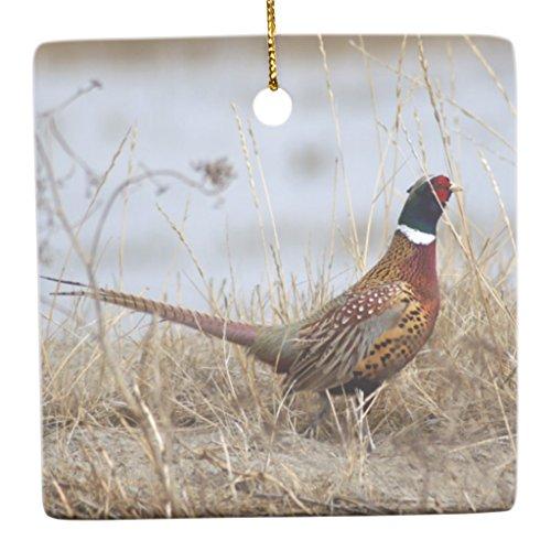 Zazzle Ring-neck Pheasant 2 Ceramic Ornament Square
