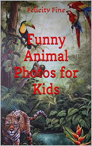 Funny Animal Photos for Kids