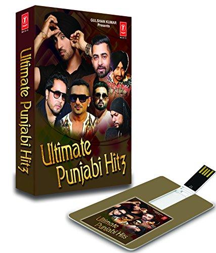 Price comparison product image Ultimate Punjabi Hits Audio Songs 4 GB Music Card Yo Yo Honey Singh Mika Singh And T-series
