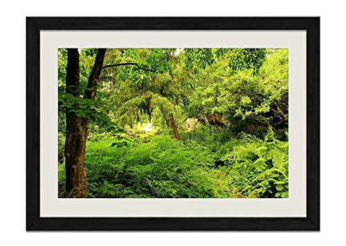 CU.RONG Natural Flora Wood Frame Poster Home Art Deco Picture Print Framed Painting(16x24 in Black Frame)