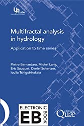 Multifractal Analysis in Hydrology: Application to Time Series