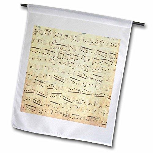 3d Rose 3dRose fl_120273_1 Grunge Musical Notes-Vintage S...