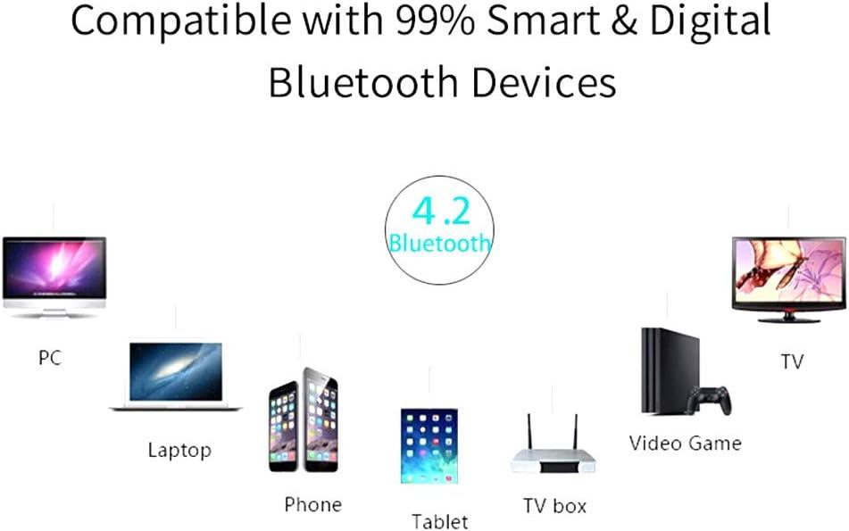Auplew Altoparlante Wireless Bluetooth Altoparlante Wireless Portatile con Altoparlante Stereo 3D per PC Tablet PC Cellulare supportato