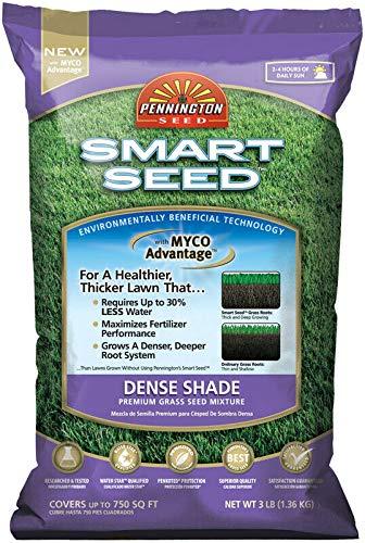 Pennington Seed Smart Seed Dense Shade Premium Grass Seed Mixture 750 Sq. Ft. Ba