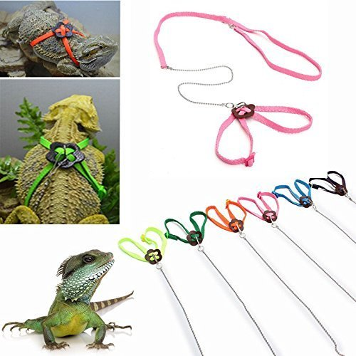 Adjustable Pet Reptile Birds Lizard Harness Leashes Adjustable Multicolor Soft Fashion Pet (Reptile Buckle Belt)