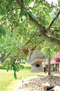 Carson Home Accents Enchanted Garden Birdhouse, 12.5-Inch High, Mushroom with Fairy
