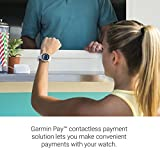 Garmin 010-01769-01 Vivoactive 3, GPS Smartwatch