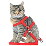 Pet Cat Lead Leash Halter Harness Kitten Nylon Strap Belt Safety Rope Adjustable Cat Collar (Red)