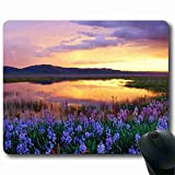 Professional Gaming Mat Mouse Pad Nature 8.66 X 7 Inch Cat With Suitable for gift giving MP121346