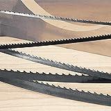 M.K. Morse 80' x 1/4' x 14 TPI Band Saw Blade