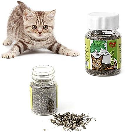 1 pound Bulk Dried Catnip Dried kittie CAT NIP Make catnip toys  FREE SHIPPING