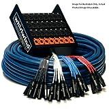 xlr to split 1 4 - Whirlwind Medusa Standard 16-Channel Stagebox to Fanout Snake Cable, 50' Length, 16x XLR Send & 4x XLR Return Connectors