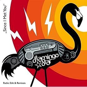Amazon.com: No Puedo Ver: Flamingo Star: MP3 Downloads