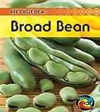 Broad Bean, Angela Royston, 1432925180