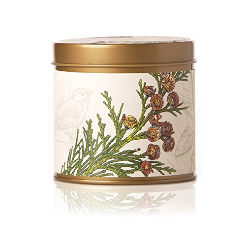 Rosy Rings Signature Tin Candle (Forest)