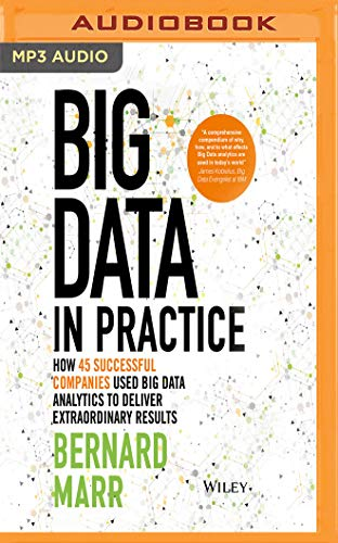 Big Data in Practice: How 45 Successful Companies Used Big Data Analytics to Deliver Extraordinary Results by Audible Studios on Brilliance Audio