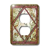 3dRose lsp_36524_6 Two Plug Outlet Cover with Shabby Vines and Frames