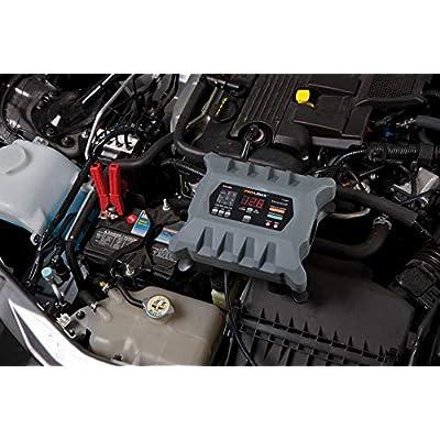 Clore Automotive PL2320 6/12V Battery Charger/Maintainer-20 Amp: Automotive