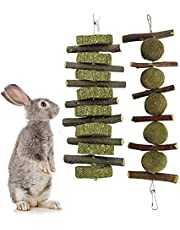 Zokbom 2Pcs Apple Wood Chew Sticks, Natural Apple Branches with Grass Cake Bunny Toys, Chew Toys for Rabbits Guinea Pigs Chinchilla Hamster Small Animals (2PCS chew)