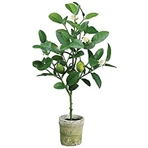 "Artificial Lemon Tree Topiary in Pot 22""H 3"