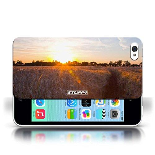 Etui pour Apple iPhone 5C / Récolte conception / Collection de Coucher du Soleil