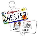 License Plate Custom Dog Tags for Pets - Personalized Pet ID Tags - Available For All 50 States - Dog Tags For Dogs - Dog ID Tag - Personalized Dog ID Tags - Cat ID Tags - With Pet Photo