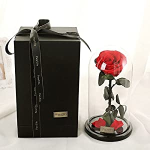 Beauty and The Beast Red Rose, Preserved Fresh Flower with Fallen Petals in a Glass Best Gifts for Lovers Box 5