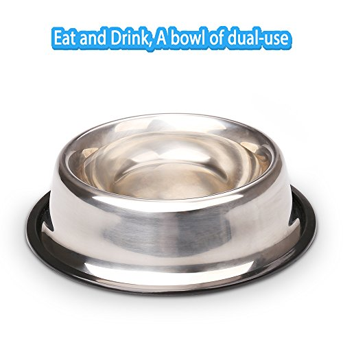 Miaosun Pet Bowls For Cats Non Skid With Natural Rubber