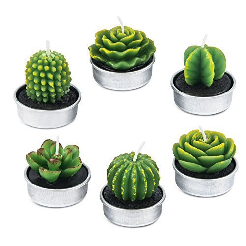 AMASKY Cactus Tealight Candles, Handmade Delicate Succulent Cactus Candles for Valentine's Day Birthday Party Wedding Spa Home Decoration(6 Packs)