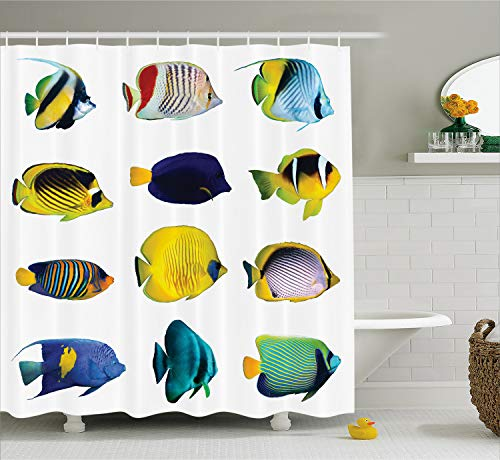 Ambesonne Ocean Animal Decor Shower Curtain, Tropical Fish Figures with Zebrasoma Anemonefish Dive Nemo Aqua Home Decor, Fabric Bathroom Decor Set with Hooks, 70 Inches, - Fabric Aqua Decor Home
