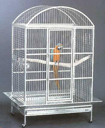 Avian Adventures Grande Playtop Bird Cage, (Avian Adventures Stainless Steel)