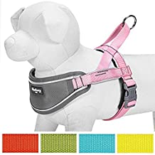 """Blueberry Pet Soft & Comfy 3M Reflective Strips Padded Dog Harness Vest, Chest Girth 30"""" - 38.5"""", Pink, Nylon Adjustable Training Harnesses for Dogs"""