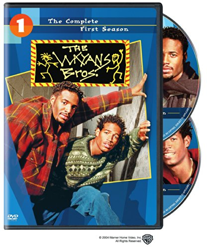 wayans brothers tv series - 3