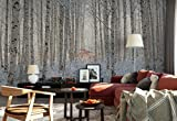 Photo wallpaper wall mural - Frosty Birch Tree Trunks Woods - Theme Forest & Trees - XXL - 13ft 8in x 9ft 6in (WxH) - 4 Pieces - Printed on 130gsm Non-Woven Paper - 1X-1248148VEXXXXL