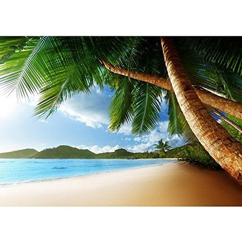 Vlies Fototapete PREMIUM PLUS Wand Foto Tapete Wand Bild Vliestapete - LONELY BEACH - Strand Meer Palmen Beach 3D Ozean Palme - no. 004, Größe:400x280cm Vlies