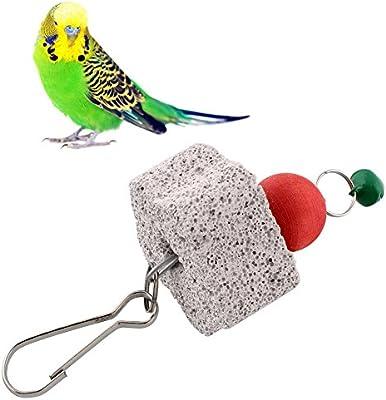 funnytoday arnés Parrot Bird Squirel jaula Chew Bite Bell Juguete ...