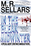 In The Bleak Midwinter: A Special Agent Constance Mandalay Novel