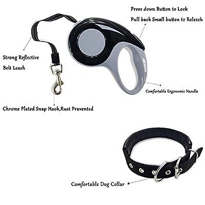 Retractable Dog Leash with Dog Collar ,Adjustable 16.4ft Retractable Pet Leash Dog Lead for Dogs To Training, Walking, Jogging
