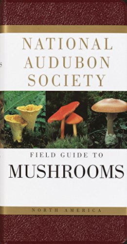 National Audubon Society Field Guide to North American Mushrooms (National Audubon Society Field Guides) (Name A Type Of Cheese American Like The Best)