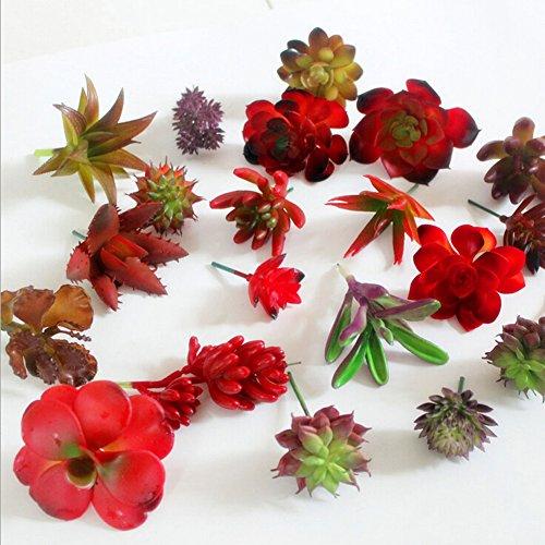 Canghai 5PCS Decorative Simulation Succulents Artificial Cactus Plant Random Style supplier