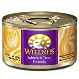 Wellness Complete Health Natural Wet Canned Cat Food, Salmon & Trout Pate, 3-Ounce Can (Pack of 24)