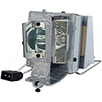 AuraBeam Professional Optoma BL-FP260C Projector Replacement Lamp with Housing (Powered by Philips)