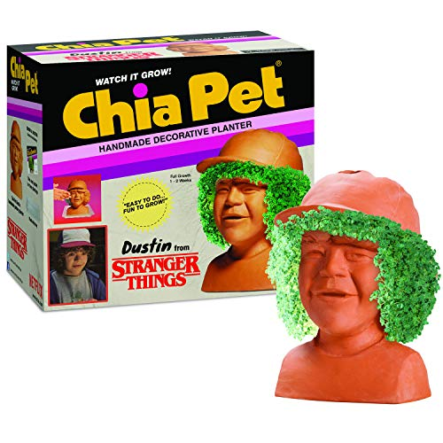Chia Pet Dustin Stranger Things with Seed Pack, Decorative Pottery Planter, Easy to Do and Fun to Grow, Novelty Gift, Perfect for Any Occasion