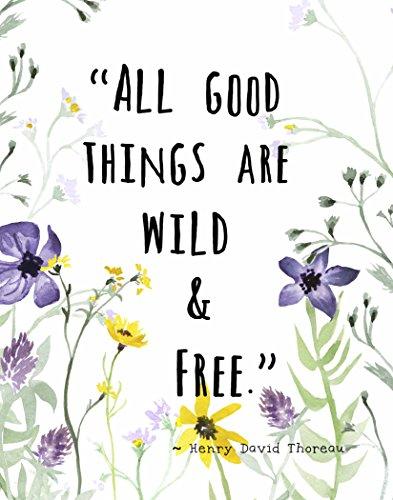(Wall Art Print by ArtDash ~ HENRY DAVID THOREAU quote w/ Wildflowers: